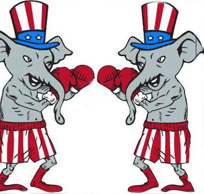 Conservative vs. Conservative
