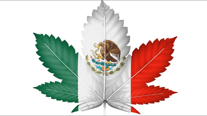 Mexico Just Legalized Medical Marijuana: But There's a Little Problem