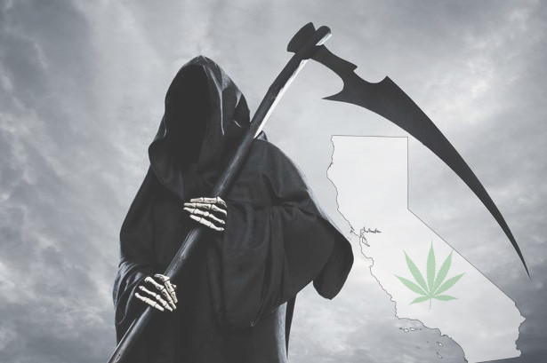California's New Cannabis Tax May Kill Legal Market and Fuel Black Market
