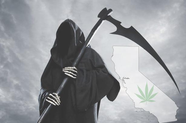 California's New Cannabis Tax May Kill Legal Market and Fuel Black Market