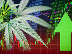 Cannabis Stocks Jump on Georgia Election News