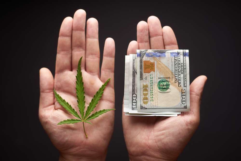 Nearly 3,000 Illegal Cannabis Businesses Operating in California