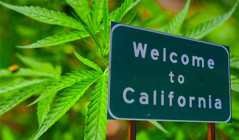 California Cannabis Shortage