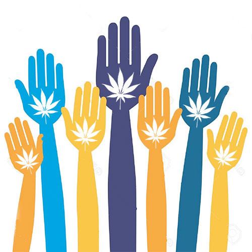 7 Takeaways on Marijuana in Massachusetts