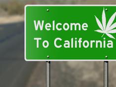 What California Got Wrong with its Marijuana Legalization