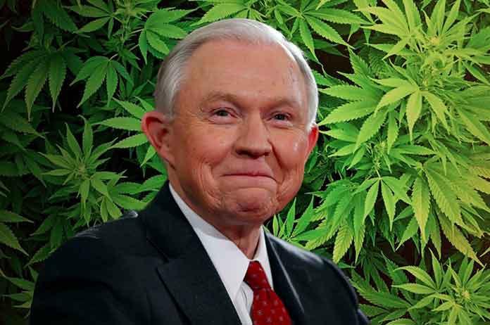 Jeff Sessions is becoming marijuana's best friend