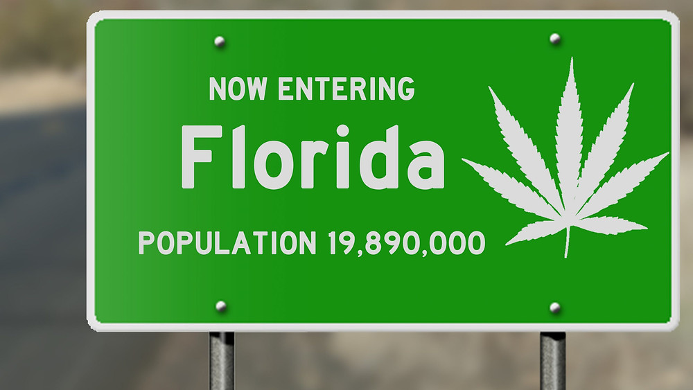 Why Florida's Medical Marijuana Program is So Horrible. www.cannanews.buzz