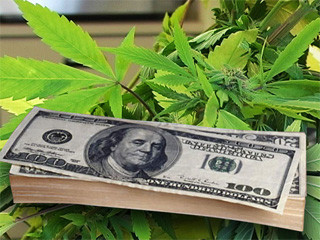 cannabis-money.jpg