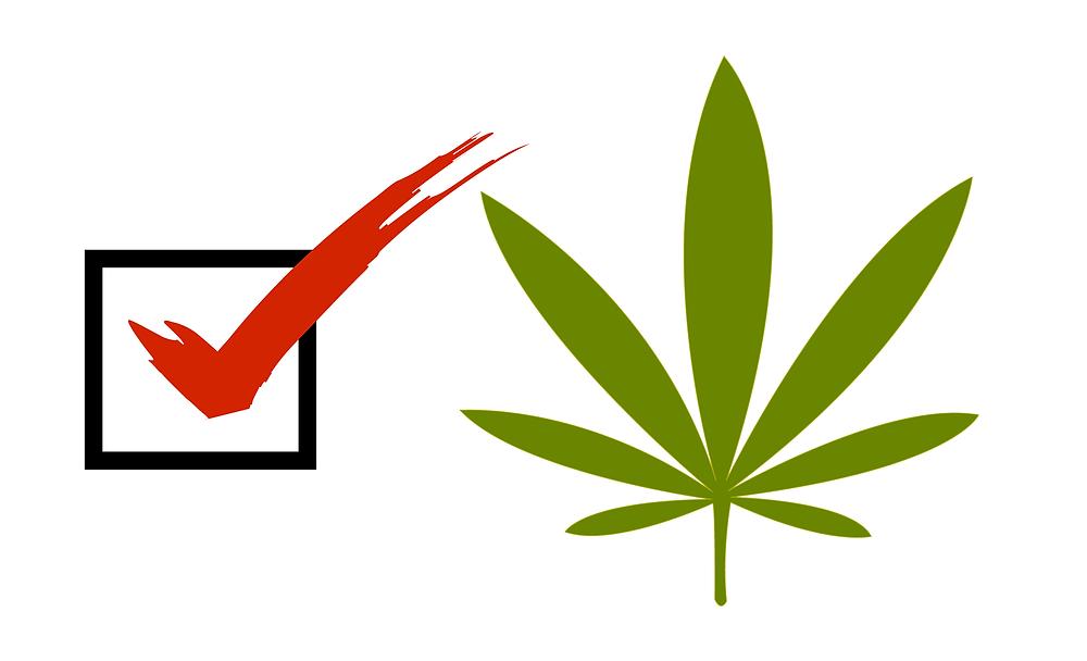 Marijuana Voters Guide