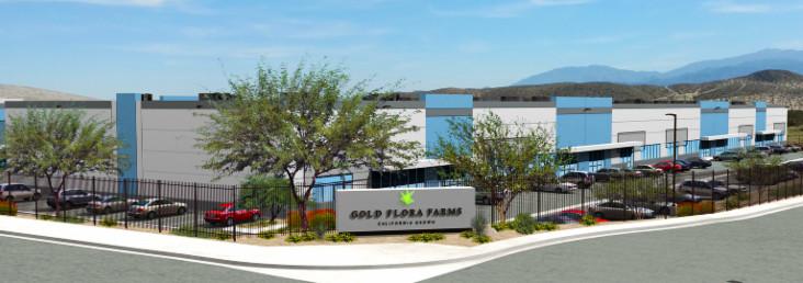 gold flora farms.www.cannanews.buzz