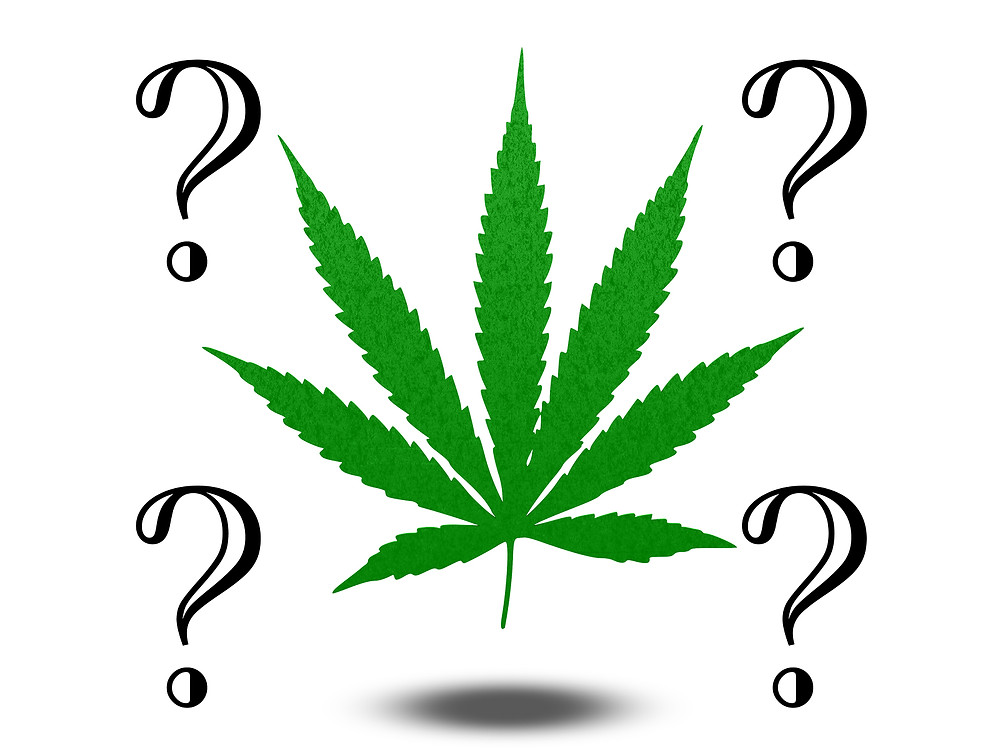 A beginner's guide to buying recreational marijuana.   www.cannanews.buzz