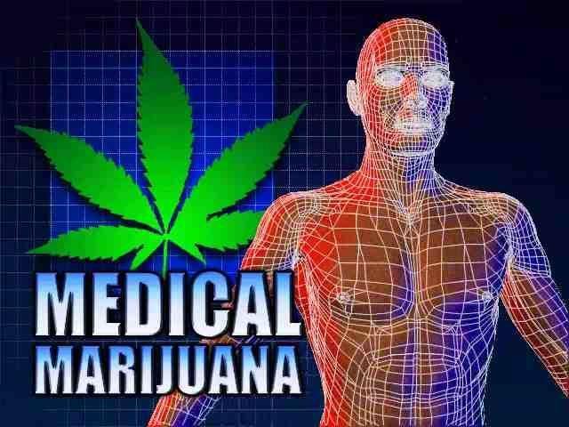 US Government Says Marijuana Can Shrink Tumors