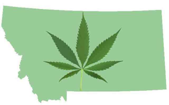 politician-wants-ban-medical-marijuana-montana.jpg