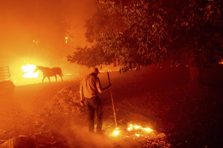 """Apocalyptic"" California Wildfires Consume Cannabis Farms"