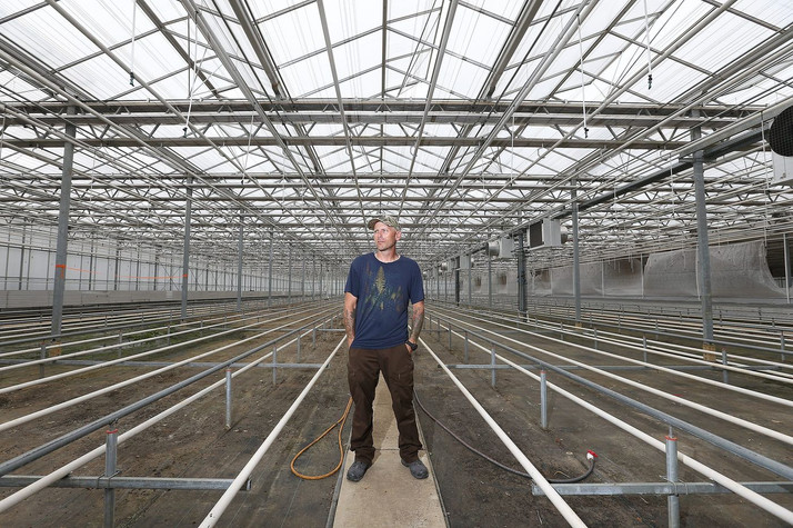 Greenhouses Repurposed from Orchids to Cannabis in New Jersey as Demand for Legal Marijuana Surges