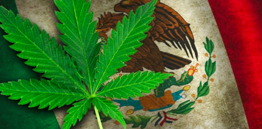"Mexican Supreme Court: ""Ban on Marijuana Unconstitutional"""