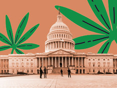 House to Vote on Removing Cannabis From List of Controlled Substances