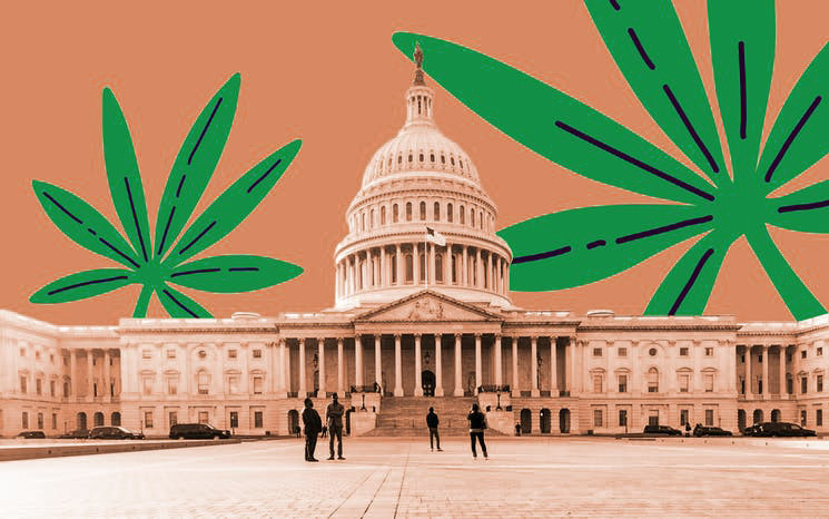 House to Vote on Removing Cannabis From List of Controlled Substances. www.cannanews.buzz