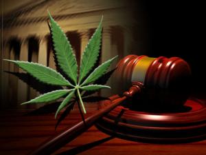 marijuana-court-300x225.png
