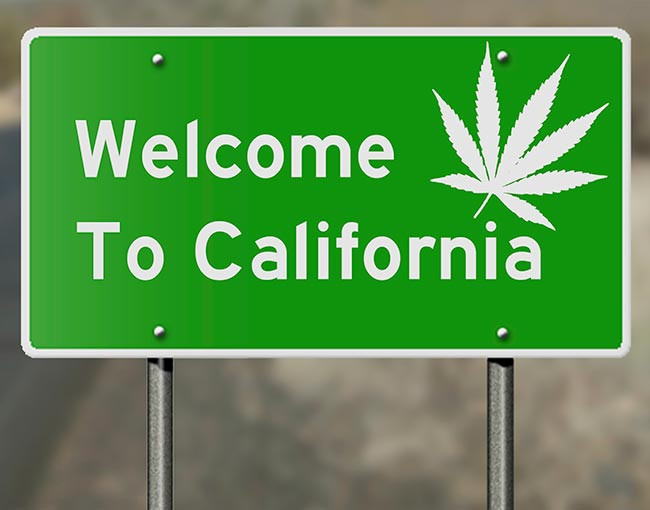 Confusion Coming in California's Legal Marijuana