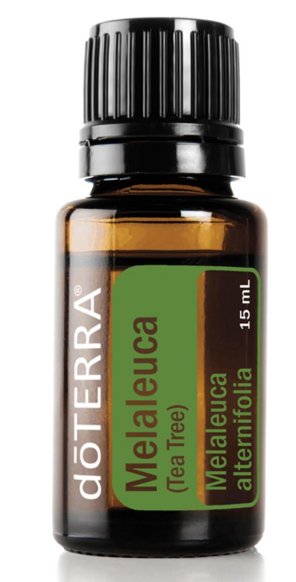 doTerra Melaleuca (Tea Tree) Oil