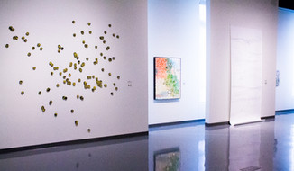 Land/Lines - installation view