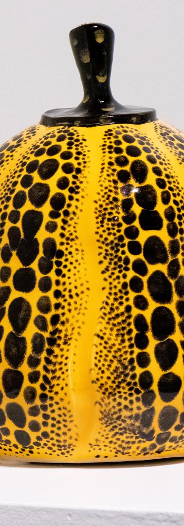 Yellow and Black Pumpkin by Christina Dixon