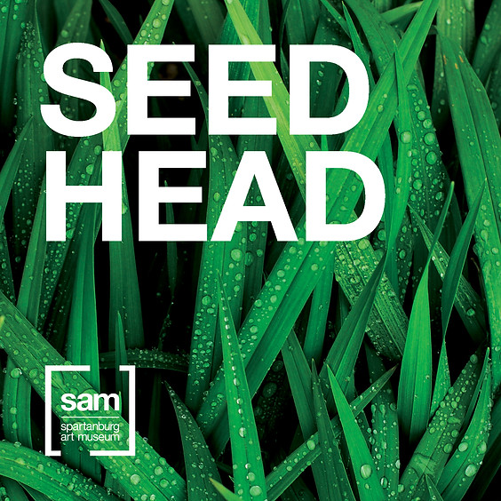 Family Fundays   Seed Head