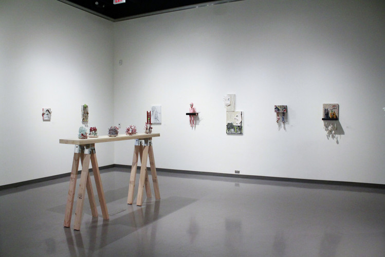 Cognitive Dissonance - installation view