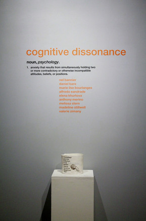 Cognitive Dissonance - installation view