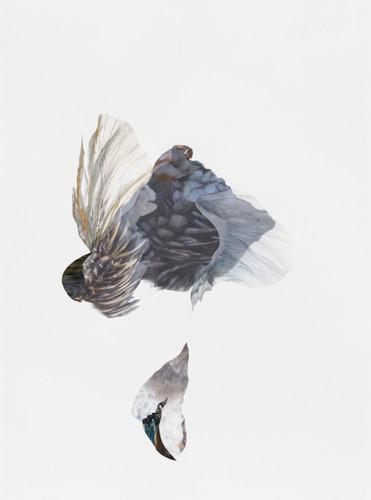Lisa McCutcheon