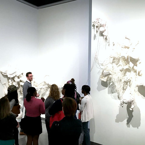 Adult  |  Curator-Led Tour