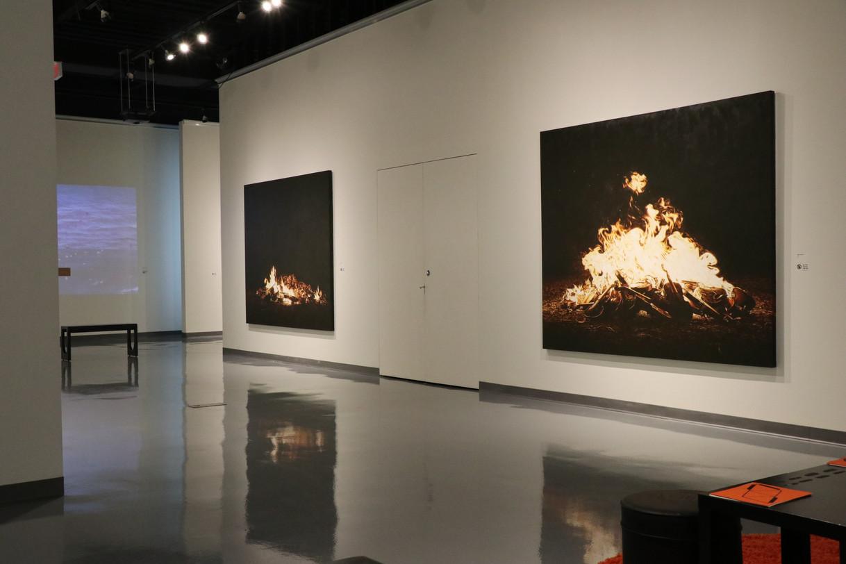 In Their Element - installation view