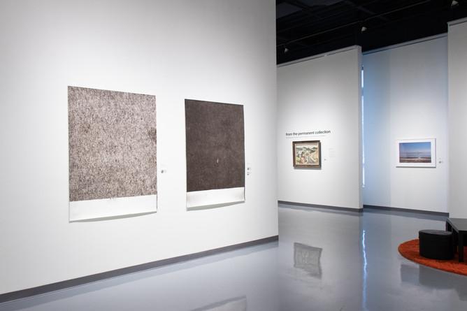 All Terrain: installation view