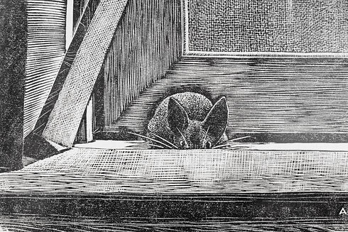 Cook_TheMouse_woodcut-4.jpg