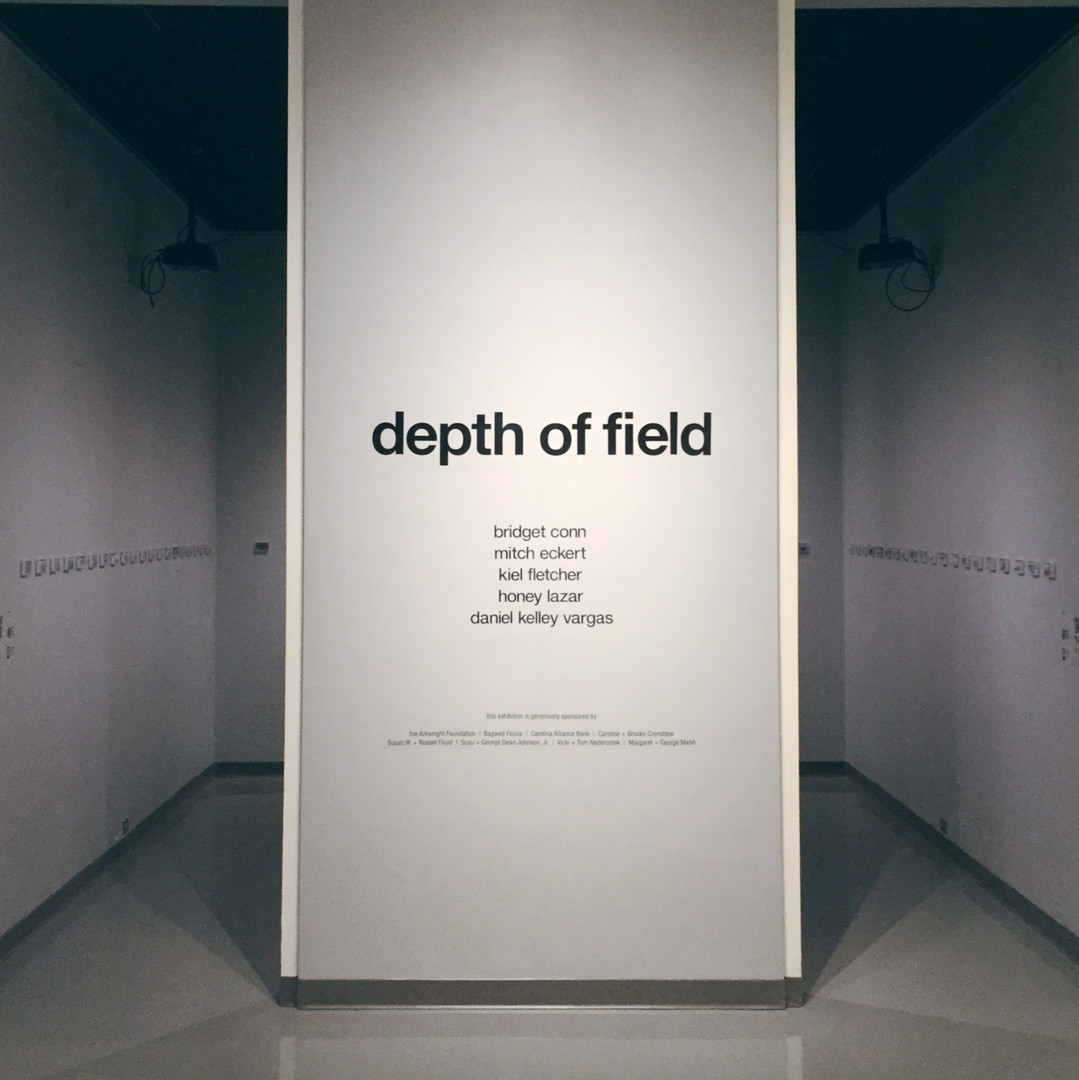 Depth of Field: installation view