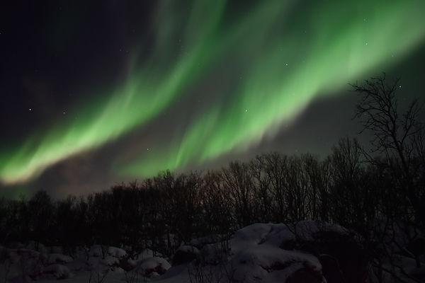 Northern Lights Safai | Tromsø, Norway | Ellen Kvam Norwegian Design