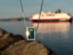 Northern Lights Necklace in front of Hurtigruten Cruiseliner