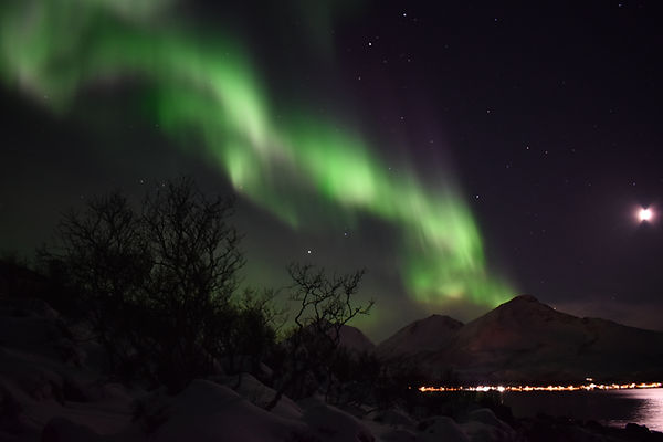 Northern Lights | Aurora Borealis | Tromsø, Norway