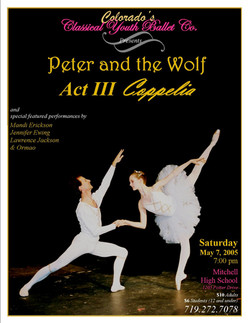 2005-5-7 CYB program poster