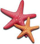 RedAndOrangeStar.png
