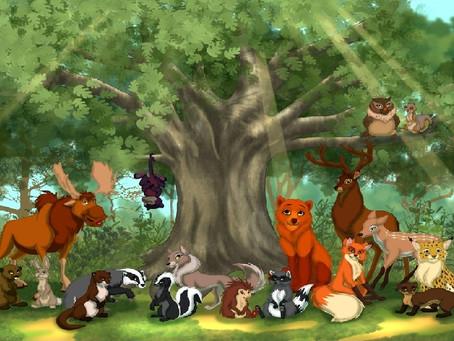 Дремучий лес, полный сказок и чудес!