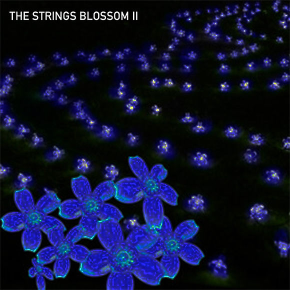 Strings blossom II.jpg