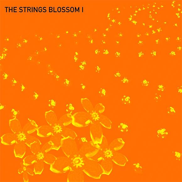The Strings blossom I.jpg