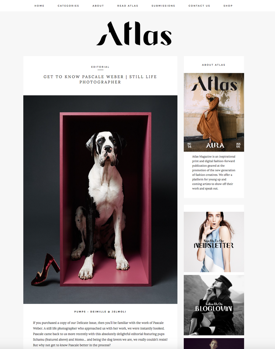Atlas 2017