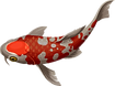 fish-icon.png