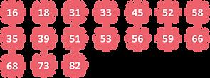 对抗子宫癌hpv_dna_h-300x112.png
