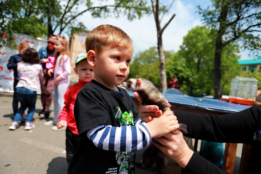 2 июня - День защиты детей