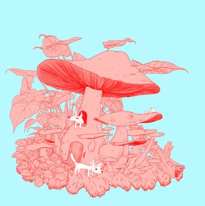 蘑菇.jpg