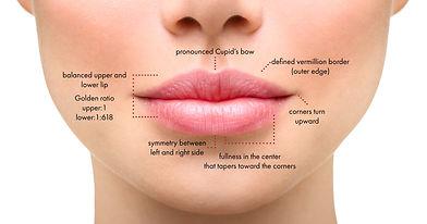 Oral Comissures.jpg